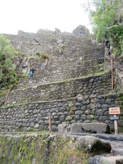 Terraces near the top of the steep climb up Huayna Picchu at Machu Picchu