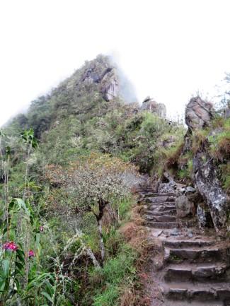 Steep climb up Huayna Picchu at Machu Picchu