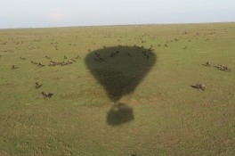Our balloon ride over the Serengeti